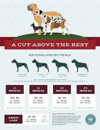 Raw Feeding Chart For Puppies Raw Feeding Freebies Perfectly Rawsome Raw Feeding Guidelines