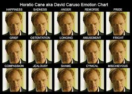 Horatio Cane Aka David Caruso Emotion Chart After Watching