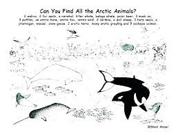 Arctic Animal Coloring Pages Antiatominfo