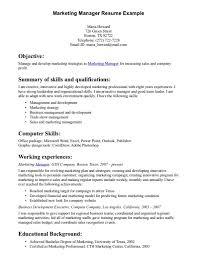 Internet Marketing Executive Resume | Dadaji.us