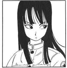 鳥山明先生の描く女の子キャラで1番可愛いのは誰 イラスト画像