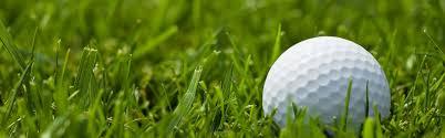 Turf Disease Chart Golfball Nufarm Canada