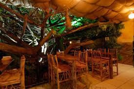 Best Of Restaurants  Monteverde Costa RicaTreehouse Monteverde Costa Rica