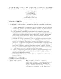 Resume Title Page Example Cool Example Of Resume Title Llun