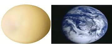 Rezultat slika za Nojevo jaje