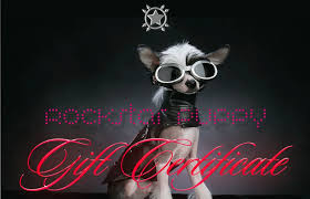 Gift Certificate Designer Gift Certificates For Designer Dog Clothes And Accessories