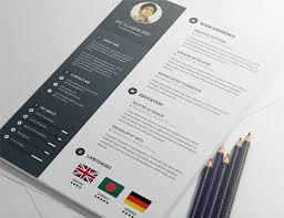 Graphic Resume Templates Simple 48 Free Editable CVResume Templates For PS AI