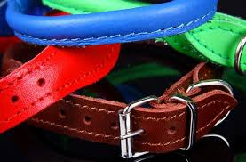 soft rolled leather dog collar