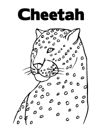 Small Picture Free Coloring Pages Of A Cheetah Animal Coloring pages of
