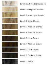 Shimmer Lights Mixed With Developer Hair Color Levels And Different Volumes Of Developers