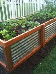 corrugated metal garden beds. Fine Corrugated Corrugated Metal And Wood Raised Bed This Handsome Raised Bed Is Made From  A Combination Of Wood Metal To Achieve New Look In U2026 Throughout Garden Beds W