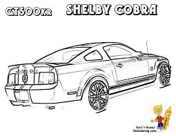 Car 16 Ford Mustang Shelby Gt