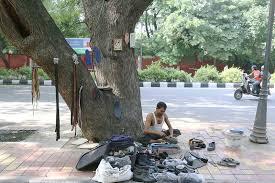 city nature bachchan dev ram s neem tree lodhi road the delhi city nature bachchan dev ram s neem tree lodhi tree