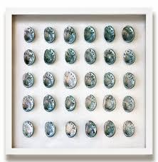 corolla coastal beach teal blue abalone shell wall decor by karen robertson kathy kuo