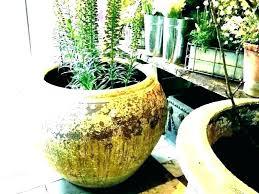 outdoor planters large pots for plants large outdoor pots where to plant pots outdoor planters