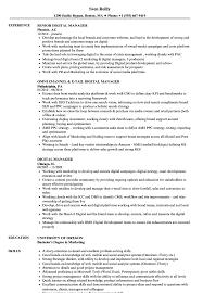 Digital Manager Resume Samples Velvet Jobs