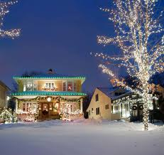 Polygroup Illuminations Garland Led Lights Holiday Lights Polygroup