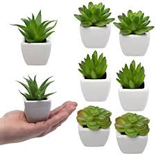 small office plant. set of 8 small green succulent artificial house plants ceramic pots home office plant m