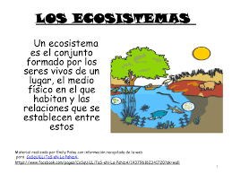 http://www.primaria.librosvivos.net/archivosCMS/3/3/16/usuarios/103294/9/cm4_u6_act2/frame_prim.swf