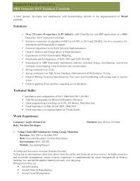 Techno Functional Consultant Sample Resume Brilliant Ideas Of Technical Consultant Cv Documents With Techno 2