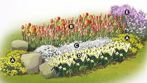 color garden. Spring Color Garden Plan