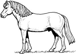 Disegno Di Il Cavallo Da Colorare Disegni Da Colorare E Stampare