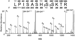 Analysis Pnas Dissociation By Peptide Mass Sequence Spectrometry Transfer Protein And Electron