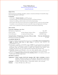 Remedy Developer Cover Letter Erp Analyst Cover Letter Fax Cover