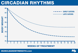 Circadian Rhythm How Meal Timing Affects Fat Loss