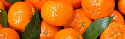 Mandarin Tangerines Mandarins Tangerines Clementines Produce Blue Book