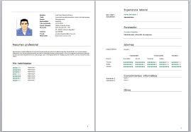 Modelo De Curriculum Vitae En Word Curriculum Vitae Para Completar E Imprimir Courtnews Info