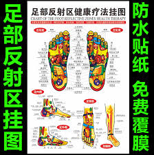 Foot Chinese Medicine Chart Museums Meridians Of Chinese Medicine Acupuncture Points