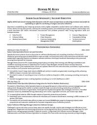 Account Executive Resume Sample Account Executive Resume Is Like ...