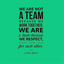 Unity Quotes Amazing Teamwork Quote Quotes About Teamwork And Unity Google Search