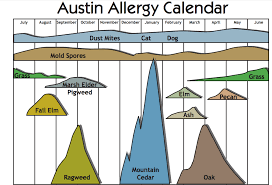 Austin Allergy Season Chart Austin We Have An Allergy Problem Gene Food