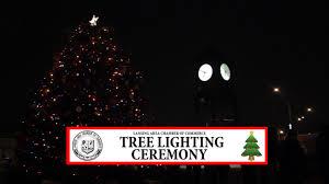 Lansing Christmas Tree Part - 28: Lansing Area Chamber Of Commerce: Christmas  Tree Lighting