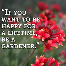 how to be a gardener. How To Become A Gardener If You Want Be Happy For Lifetime