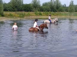 Mini ponykampen