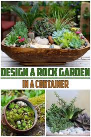 design a rock garden in a container