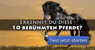 ᐅ Erkennst Du Diese 10 Berühmten Pferde