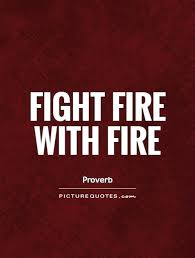 Fire Quotes Simple Fight Fire With Fire Picture Quotes