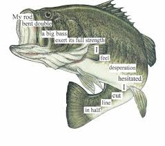 the bass the river and sheila mant essay cheap research paper exposition the bass the river and sheila mant