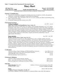 Resume Examples For It Study Australia Job Sample Experienced