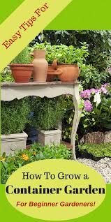 container garden plans. 5 easy tips for container vegetable gardens garden plans