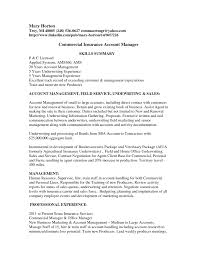 Insurance Resume Template Underwriter Format Account Manager