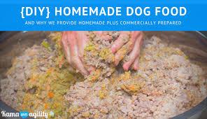 diy homemade cooked dog food