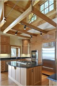 Mid Century Modern Put Track Lighting On Beams Over Your Kitchen If There Are Any Collierotaryclub 32 Cool And Functional Track Lighting Ideas Digsdigs