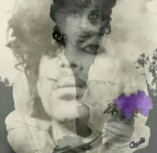 Pin by deena morton on All About Prince | Prince art, Prince rogers nelson,  Prince