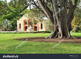 fitzroy gardens melbourne victoria australia nov 3 2018 conservatory building in lush park setting