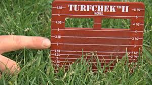 Cut Your Grass Classy Good Question How Short Should You Cut Your Grass   Wcco Cbs